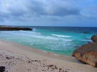 Bonaire 5