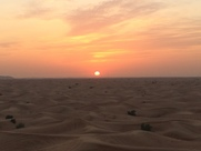 Desert (4)
