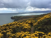 Howth (2)