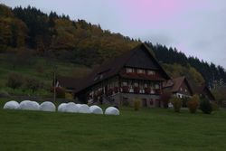 Picturesque Schwarzwald