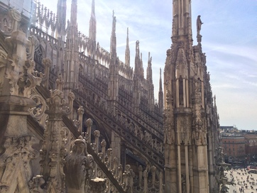 Milan cathedral (top 1)