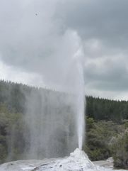 Lady Knox geyser 4