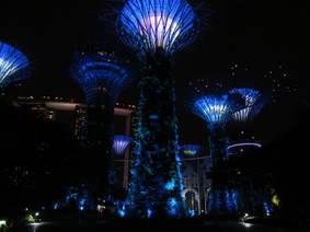 Super trees (night)