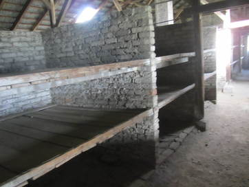 Auschwitz (bunk beds)