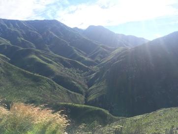 Garden Route view (1)