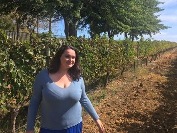 Wine tasting tour (1)