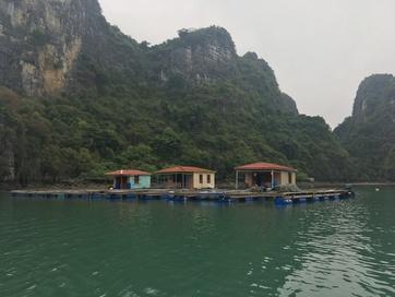 Hạ Long Bay (4)